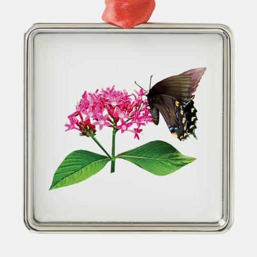 Swallowtail negro en Lantana rosado Adorno Navideño Cuadrado De Metal
