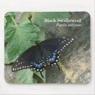 Swallowtail negro Mousepad