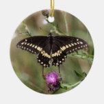 Swallowtail negro ornamento de navidad