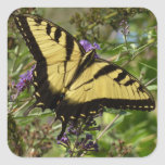 Swallowtail on Butterfly Bush Colorful Nature Square Sticker