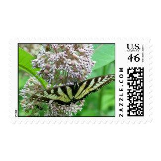 Swallowtail on Milkweed Stamp