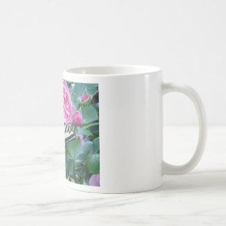 swallowtail on rose classic white coffee mug