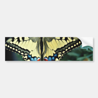 Swallowtail Papilio machaon flowers Bumper Stickers