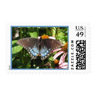 Swallowtail Postage