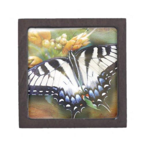 Swallowtail Premium Gift Boxes