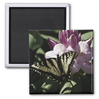 Swallowtail & Rhododendron Magnet