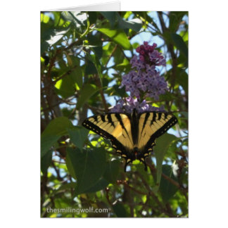 Swallowtail with Lilacs Card