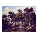 Swamp By Ruisdael Jacob Isaaksz. Van Post Cards