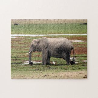 swamp elephant jigsaw puzzles