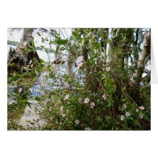 Swamp Flowers Card