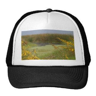 Swamp In Louisiana Hats