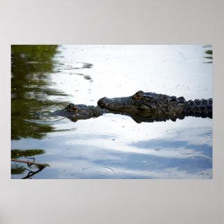 Swamp Lovin Poster