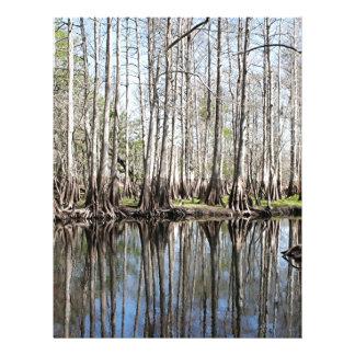 Swamp near Christmas, Florida, USA Letterhead