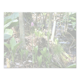 Swamp pink growing in a wetland habitat 4.25x5.5 paper invitation card