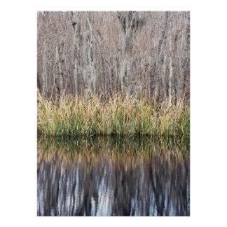 Swamp Reflection Invite