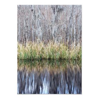 Swamp Reflection Announcement