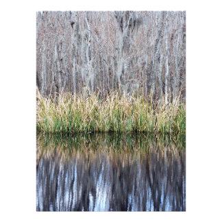 Swamp Reflection Custom Invitation