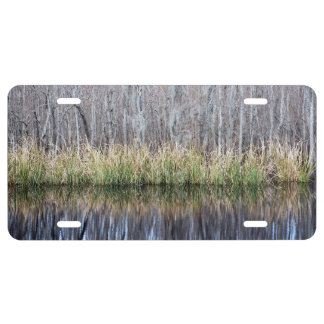 Swamp Reflection License Plate