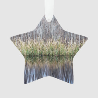 Swamp Reflection Ornament
