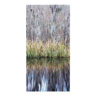 Swamp Reflection Customized Photo Card