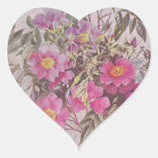 Swamp Rose Pink Floral Sticker