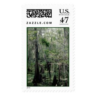 Swamp Serenity Stamp