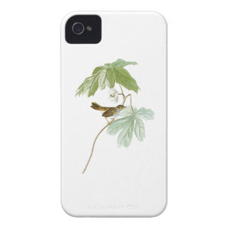 Swamp Sparrow John James Audubon Birds of America iPhone 4 Case-Mate Case