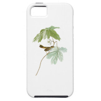 Swamp Sparrow John James Audubon Birds of America iPhone SE/5/5s Case