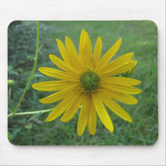 Swamp Sunflower Green Center Mouse Pad