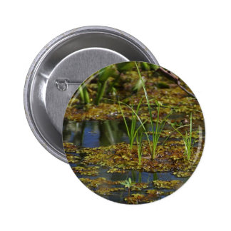 Swamps Lake 2 Inch Round Button