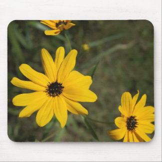 swampSunflowers_3 Mouse Pad