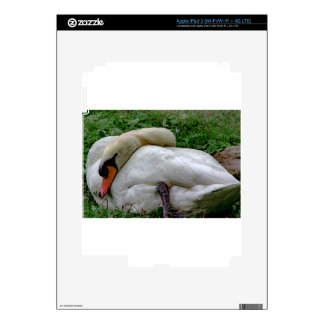 Swan 1 decals for iPad 3