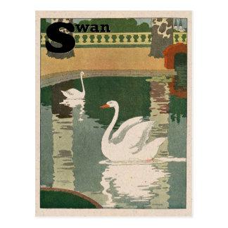 Swan Alphabet Postcard