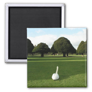 Swan at Hampton Court Palace, UK Magnet