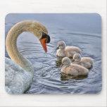 Swan Babies Mousepad