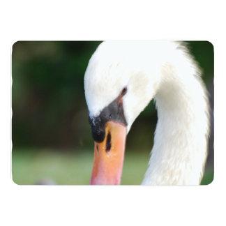 Swan Beak 5x7 Paper Invitation Card