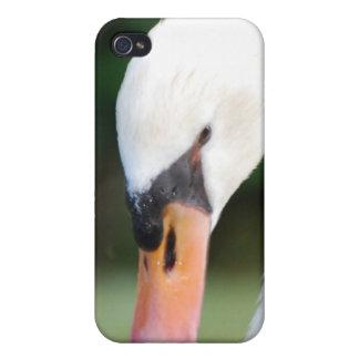 Swan Beak iPhone 4 Case