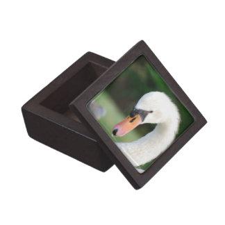 Swan Beak Premium Gift Box