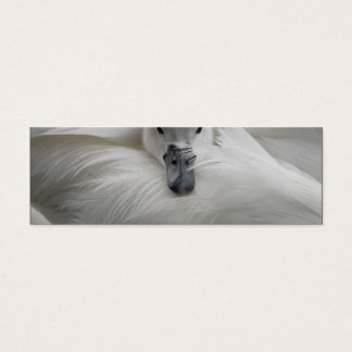 Swan, Beautiful White Feathers, Beauty Comfort Mini Business Card