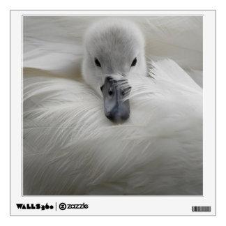 Swan, Beautiful White Feathers, Beauty Comfort Wall Sticker
