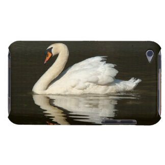 Swan Birds Wildlife Animals iPod Touch Cover