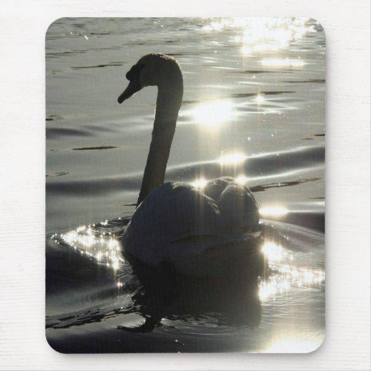 Swan Birds Wildlife Animals Mouse Pad