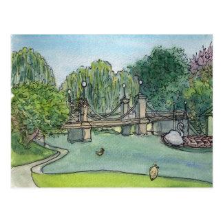 Swan Boats Boston Public Gardens Postcard