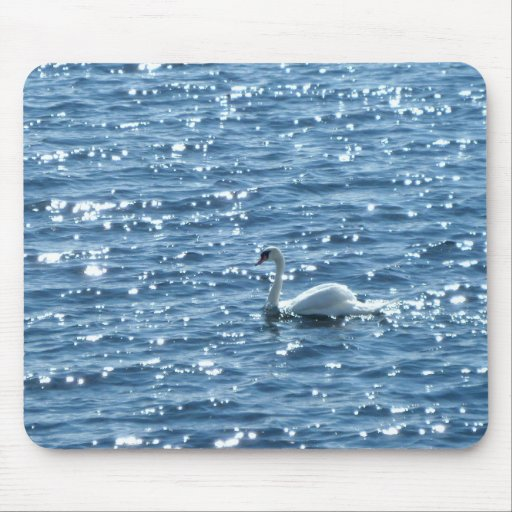 Swan, Cardiff Bay, Cardiff, Wales Mouse Pad