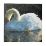 Swan Ceramic Tile