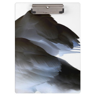 swan clipped wings invert abstract bird clipboard