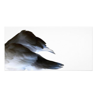swan clipped wings invert abstract bird photo card