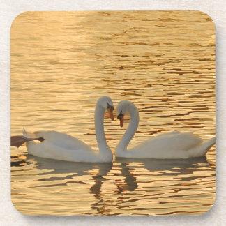 Swan Couple Meeting at Sunset Photograph Coaster