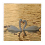 Swan Couple Meeting at Sunset Photograph Small Square Tile