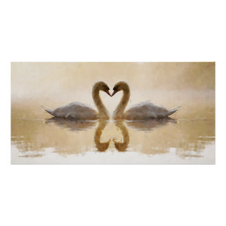 Swan Couple On Lake Watercolor Painting Poster